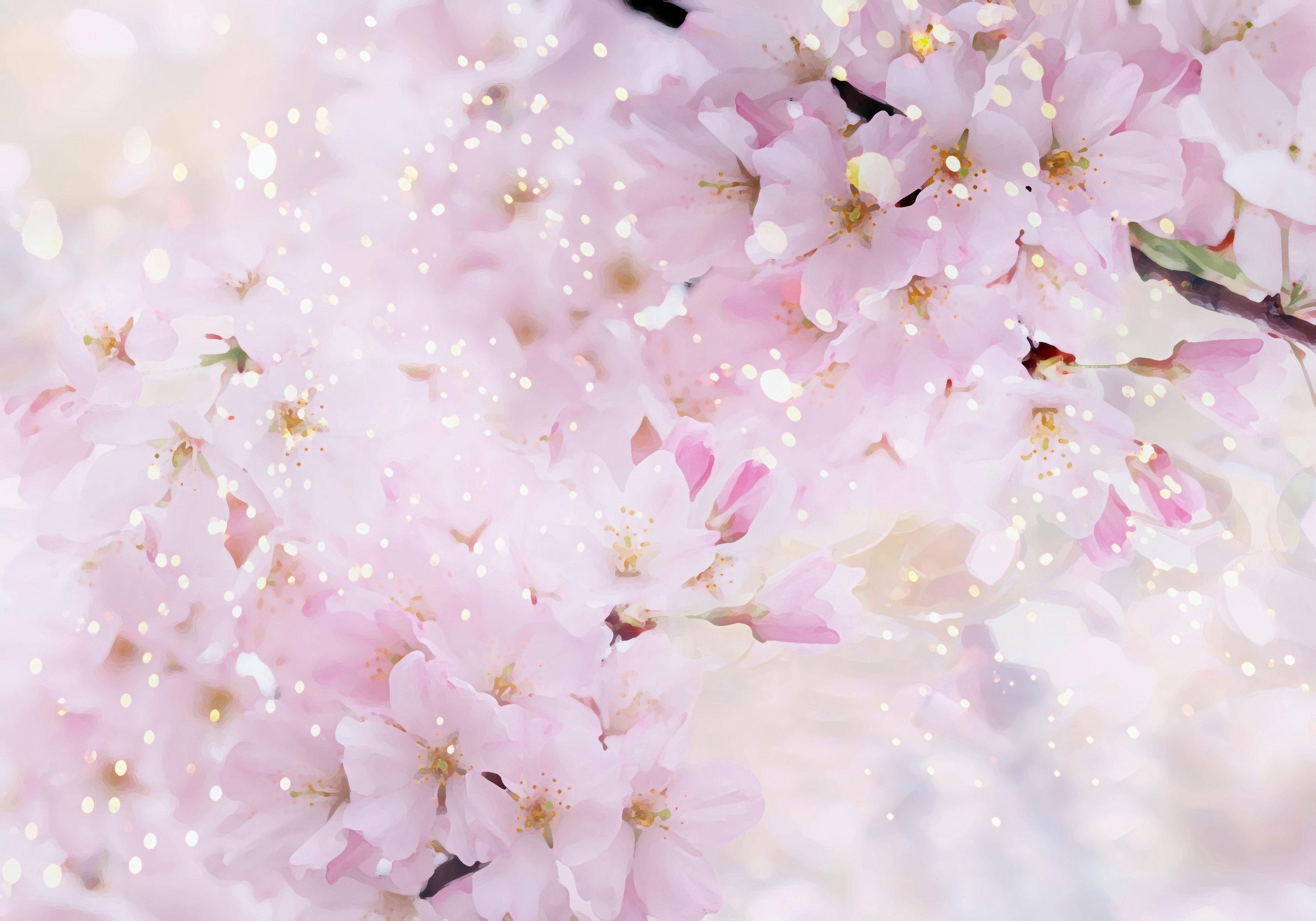 flower-back1103